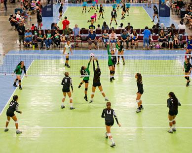 Múltiples canchas de voleibol en un torneo con pisos de 50-50